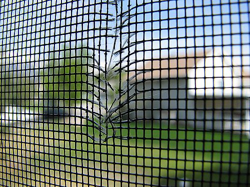 Window-Screen-Repair